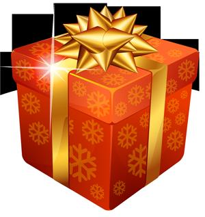 gift300